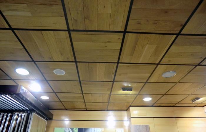 techos-y-frisos4